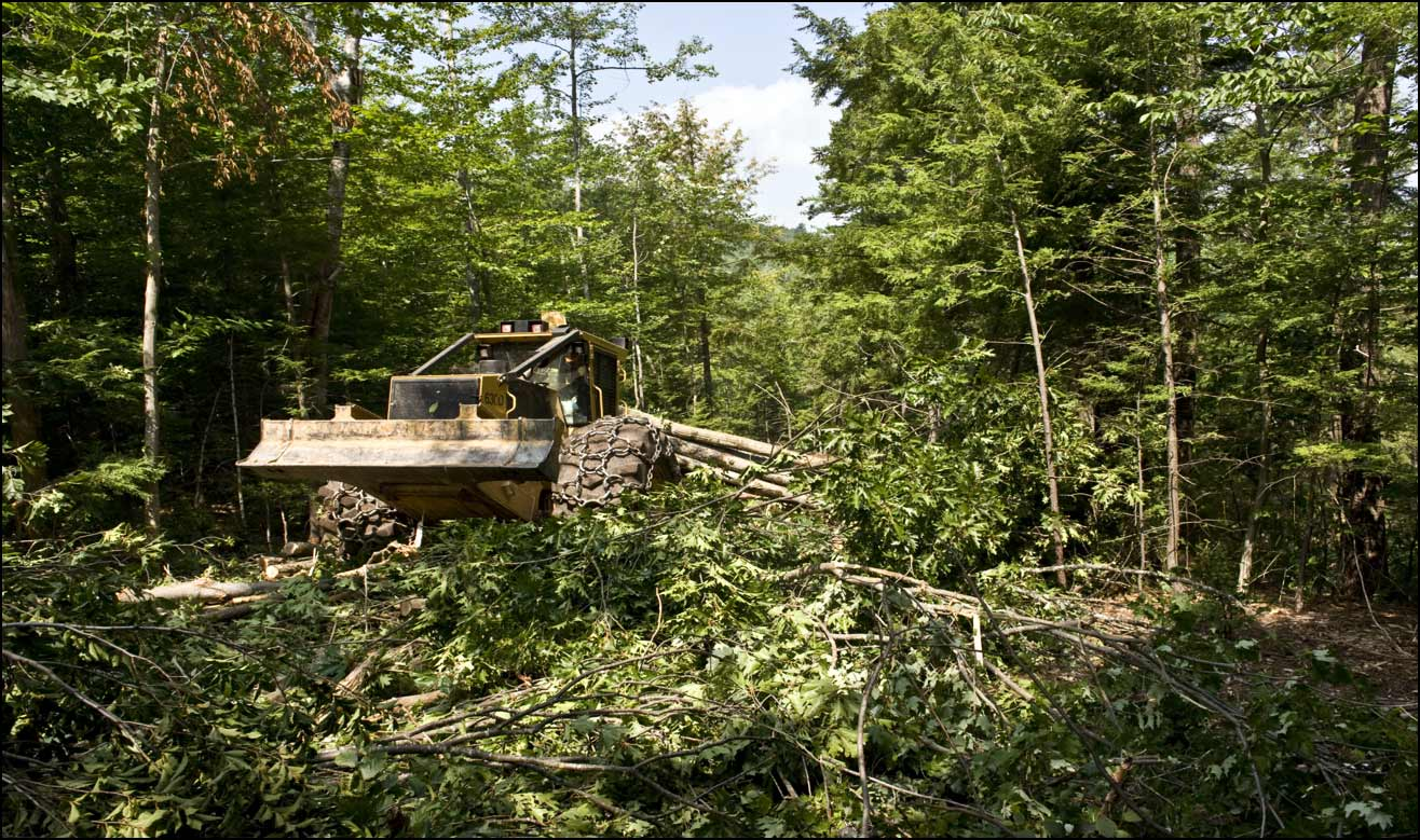 Responsible Logging